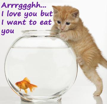 animal urges